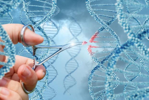 ДНК  —  это судьба?