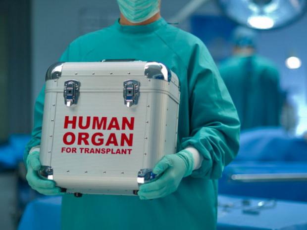 Госдума совместно с Минздравом разработала проект закона, направленного на развитие сферы посмертного донорства.