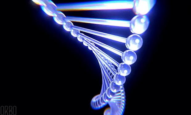 Насилие над ДНК