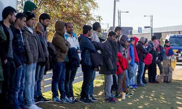 В Бельгии беженцы стали притворяться гомосексуалистами ради политубежища