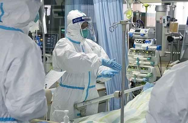 Ученые назвали сроки пика распространения коронавируса