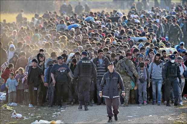 Погостили и хватит: европейские страны высылают мигрантов обратно