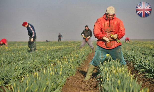 Все трудовые мигранты должны быть поставлены в равные условия, объясняют в правительстве.