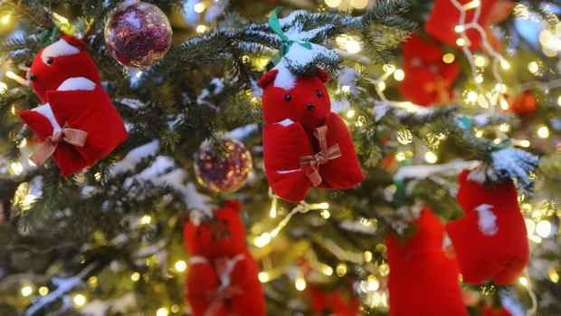 В Бельгии задержаны 10 подростков, планировавших теракты на Рождество