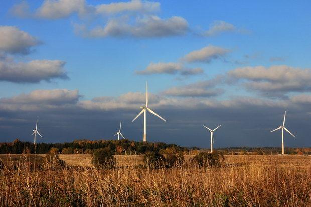 Ветряные фермы