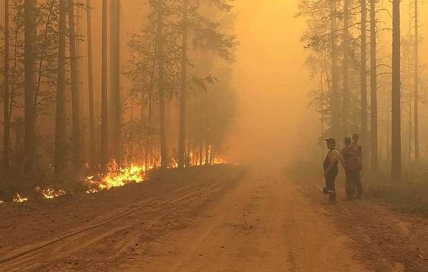 На всей территории Карелии ввели режим ЧС из-за лесных пожаров