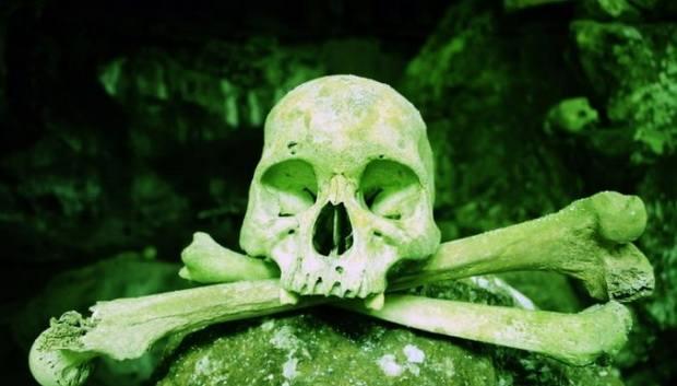 В штате Вашингтон разрешили превращать человеческие останки в почву