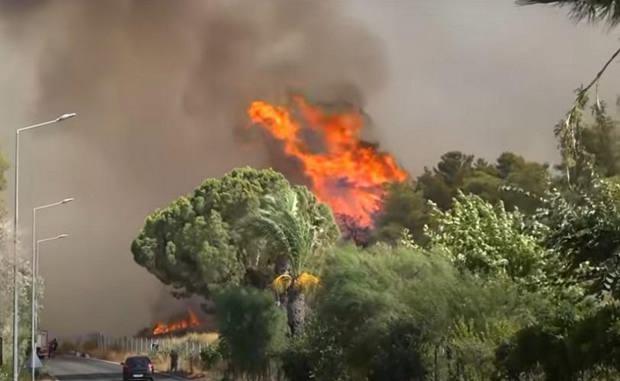 Вслед за наводнениями Европу охватили лесные пожары