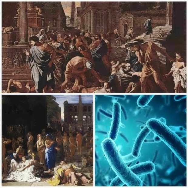 Весь период человеческой истории - это борьба против болезней.