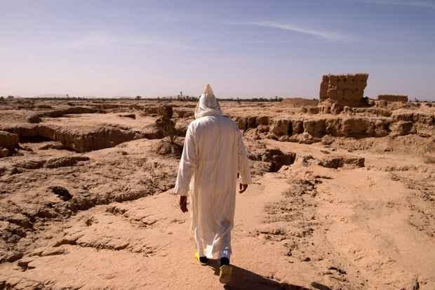 Прогноз: к 2070 году 3,5 млрд человек будут жить в непригодных климатических условиях
