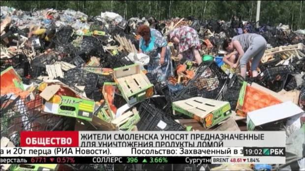 Россельхознадзор уничтожил в Москве одну из самых крупных партий санкционных продуктов