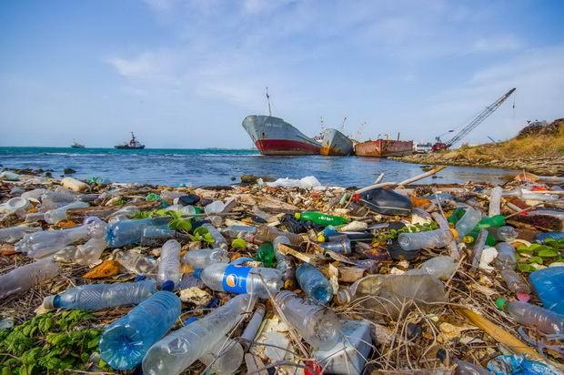 Соглашение, достигнутое на саммите G20 - лишь первый шаг к решению проблемы, недостаточно рассчитывать только на добровольные действия, заявили в японском отделении Greenpeace. Необходимо принять обязательные для всех правила по борьбе с пластиковыми отходами с четко прописанными целями и планом действий.