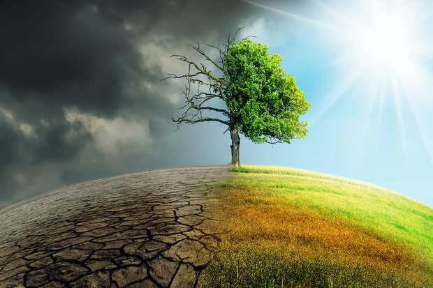 Китай и США будут сотрудничать в борьбе с изменением климата