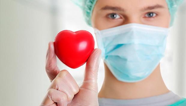 Также документом устанавливается перечень органов для трансплантации как при прижизненном, так и при посмертном донорстве.