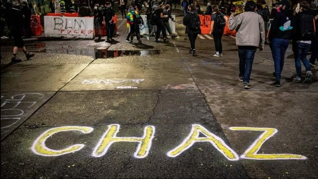 Активисты CHAZ предлагают собрать всех белых в рабочие бригады по типу трудовых лагерей