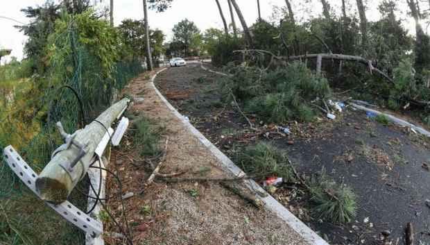 Десятки тысяч домов во Франции остались без электричества из-за урагана