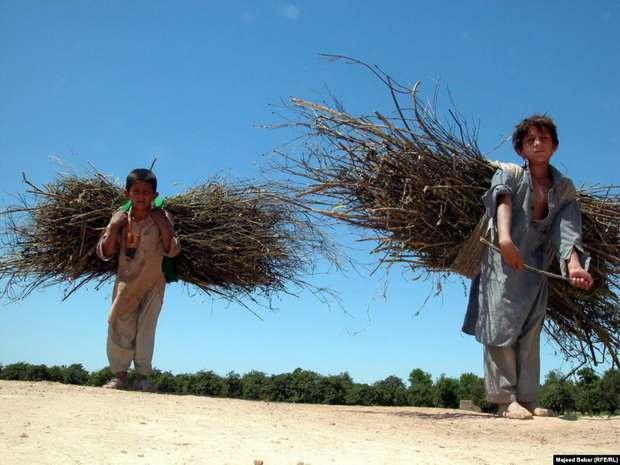 Усилить борьбу с причинам детского труда