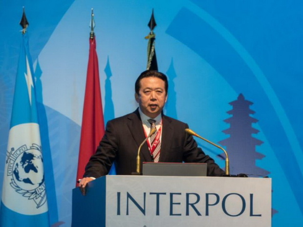 Не глава: каковы полномочия президента Интерпола