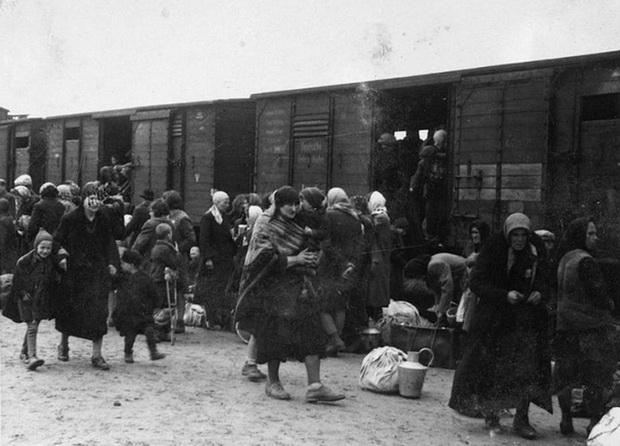 Переселенцев часто перевозили в товарных вагонах - Архивное фото