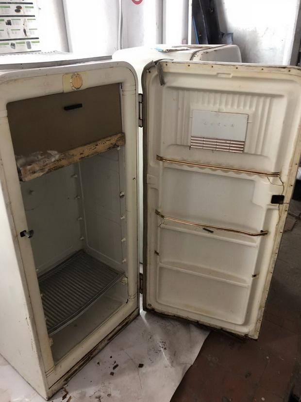 Кульминацией истории стал старый советский холодильник «ЗиЛ», который притащил домой свёкр, мотивируя свой поступок тем, что «в хозяйстве пригодится».