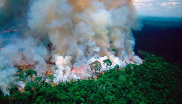 Количество пожаров в Бразилии продолжает увеличиваться