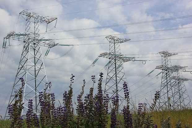 Госдума ратифицировала протокол об общем рынке электроэнергии в ЕАЭС