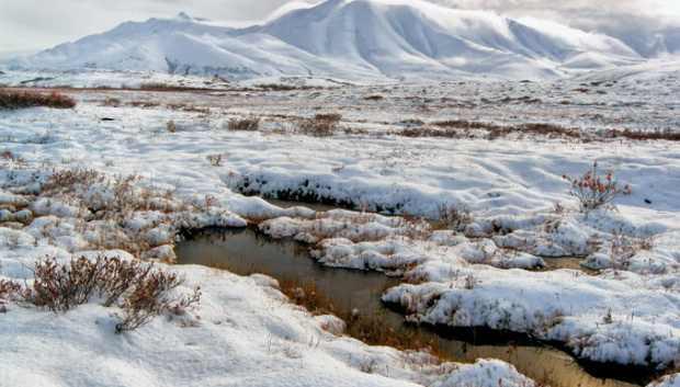 Аляска тает в 100 раз быстрее, чем предполагали эксперты