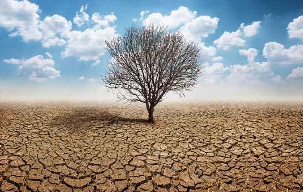 Всемирный банк предсказывает массовую миграцию из-за изменения климата